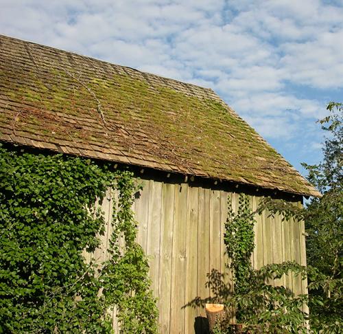 Beautiful vintage cedar building materials