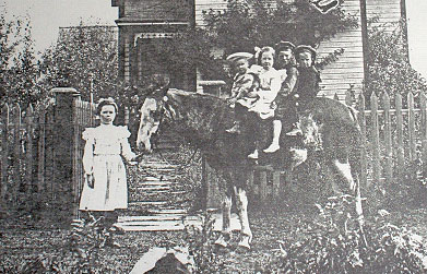 Grace - standing. On pony, l-r: Harold, Mariette (Minnie), Willie and Robert