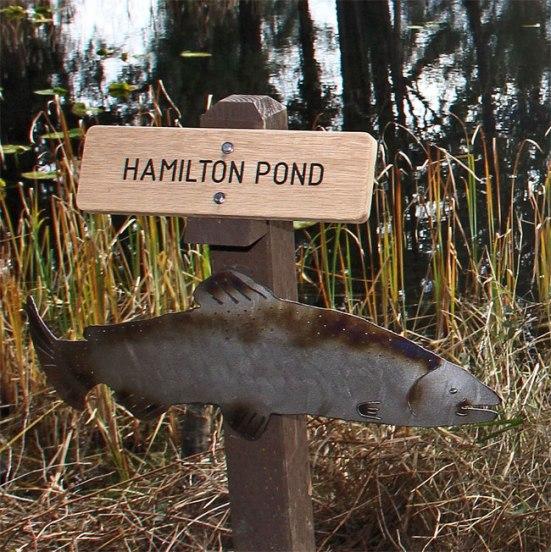 sign-pond1